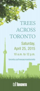 Join us at our annual Trees Across Toronto planting event at::  Saturday, April 25, 2015 10 a.m. to 12 p.m.  L'AMOREAUX NORTH PARK 1900 McNicoll Ave. (Kennedy Rd. & McNicoll Ave.)